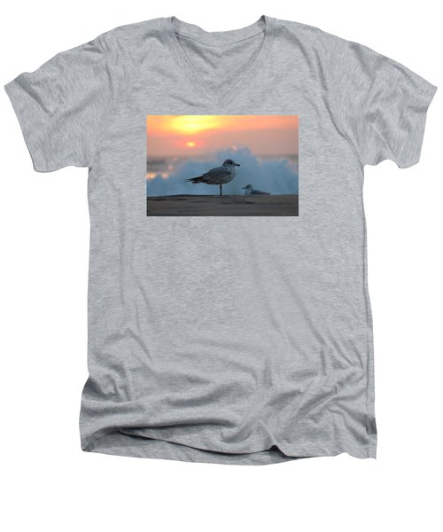 Seagull Seascape Sunrise Men's V-Neck T-Shirt