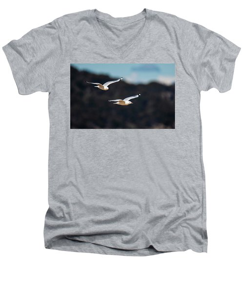 Seagulls In Flight Men's V-Neck T-Shirt