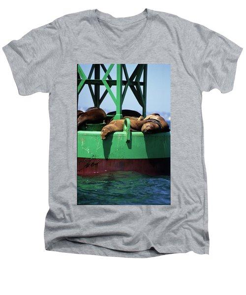 Seals On Channel Marker Men's V-Neck T-Shirt