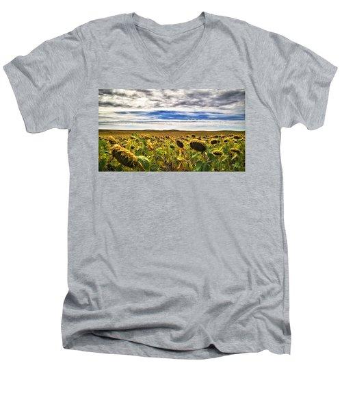 Seasons In The Sun Men's V-Neck T-Shirt