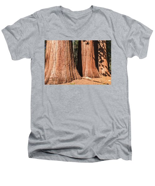 Sequoia Men's V-Neck T-Shirt