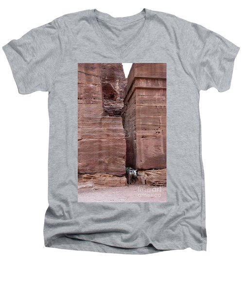 Men's V-Neck T-Shirt featuring the photograph Shade Is Good by Mae Wertz