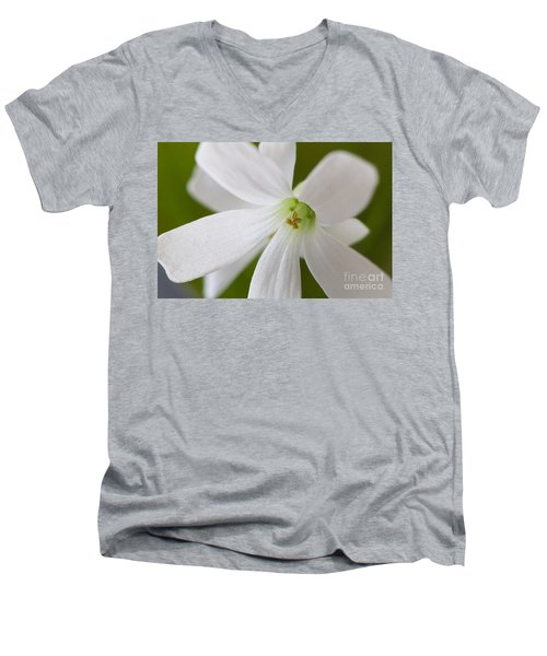 Shamrock Blossom Men's V-Neck T-Shirt