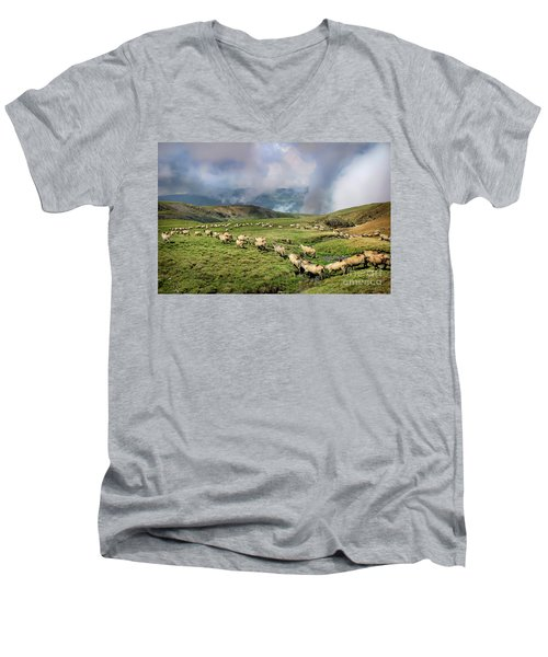 Sheep In Carphatian Mountains Men's V-Neck T-Shirt