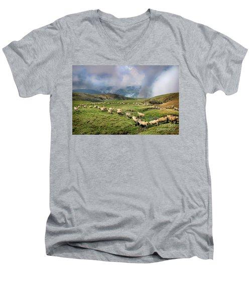 Sheep In Carphatian Mountains Men's V-Neck T-Shirt