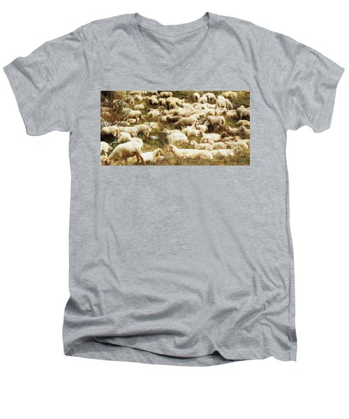Sheep Men's V-Neck T-Shirt