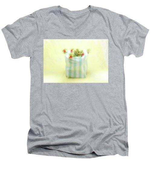 Shopping Bag Men's V-Neck T-Shirt
