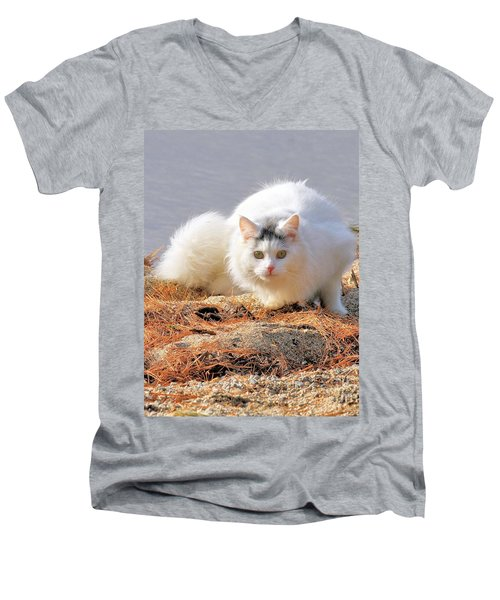 Men's V-Neck T-Shirt featuring the photograph Shore Kitty by Debbie Stahre