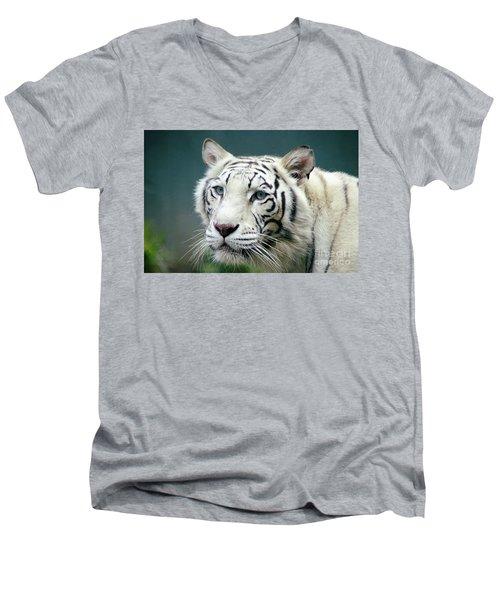 Siberian Tiger Men's V-Neck T-Shirt