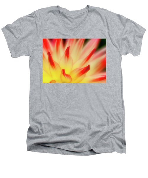 Men's V-Neck T-Shirt featuring the photograph Side View by Greg Nyquist