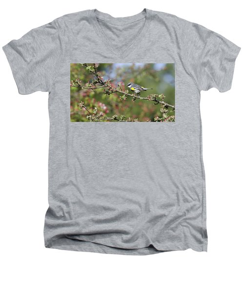 Signs Of Spring Men's V-Neck T-Shirt by Stephen Flint