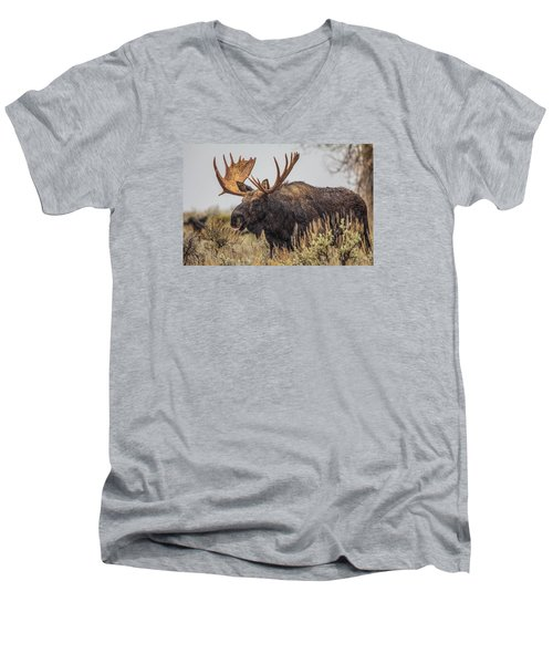 Silly Moose  Men's V-Neck T-Shirt by Kelly Marquardt