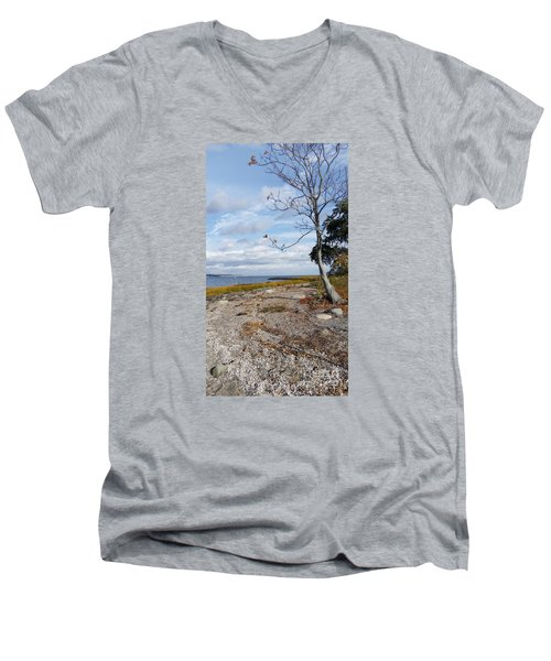 Silver Sands Men's V-Neck T-Shirt by Raymond Earley