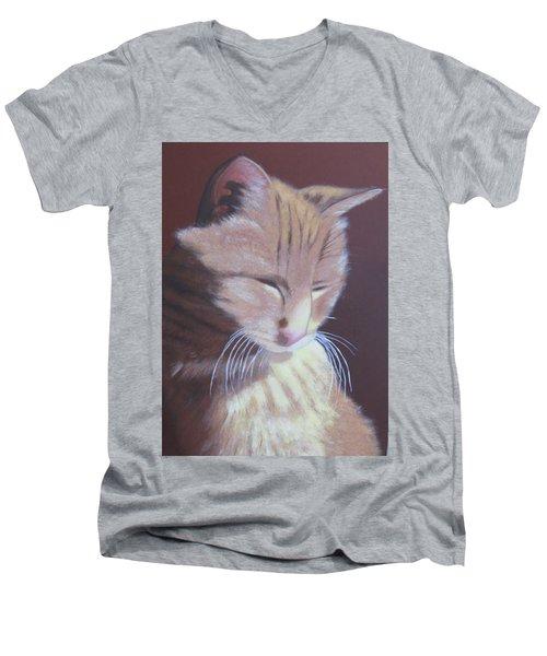Simba, Best Cat. Men's V-Neck T-Shirt