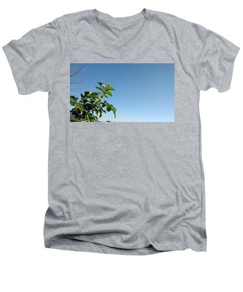 Simple Prosperity II Men's V-Neck T-Shirt