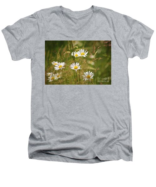 Simplicity Men's V-Neck T-Shirt by Sheila Ping
