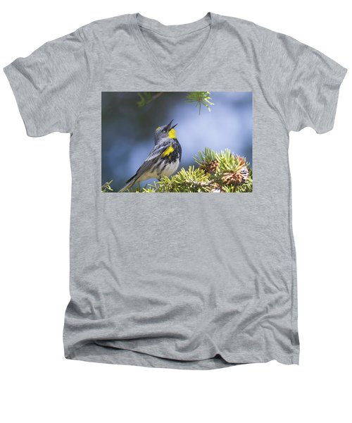 Singing Audubon's Warbler Men's V-Neck T-Shirt