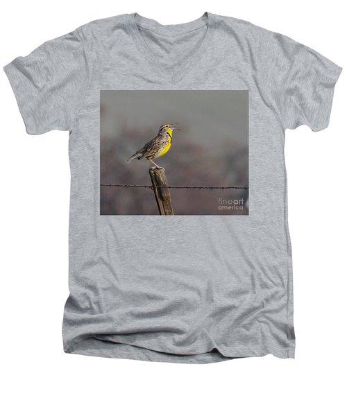 Singing Warbler Men's V-Neck T-Shirt
