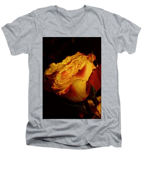 Single March Vintage Rose Men's V-Neck T-Shirt by Richard Cummings