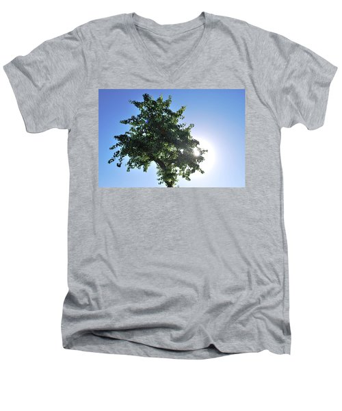 Single Tree - Sun And Blue Sky Men's V-Neck T-Shirt by Matt Harang
