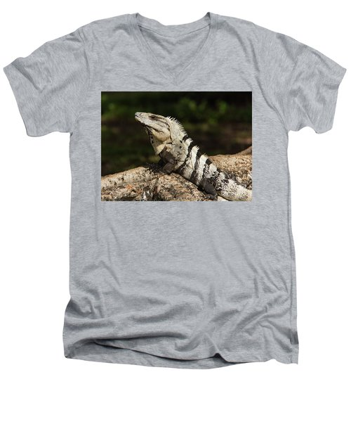 Sir Iguana Mexican Art By Kaylyn Franks Men's V-Neck T-Shirt