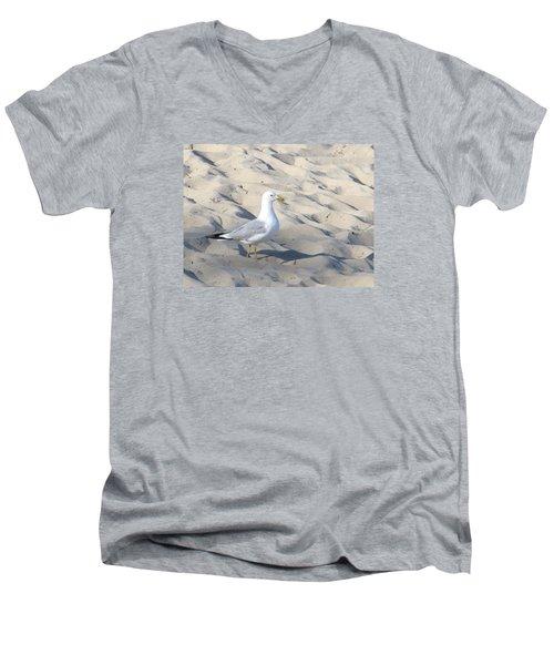 Sir Regal Seagull Men's V-Neck T-Shirt