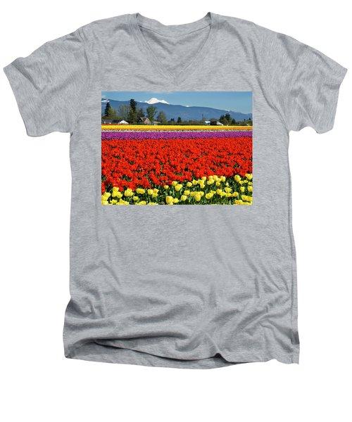 Skagit Valley Tulip Fields Men's V-Neck T-Shirt