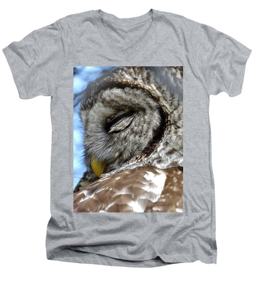 Sleeping Barred Owl Men's V-Neck T-Shirt by Rebecca Overton