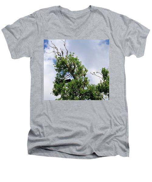 Men's V-Neck T-Shirt featuring the photograph Sleeping Monkey 2 by Francesca Mackenney