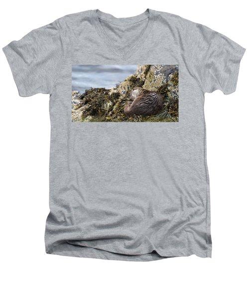 Sleeping Otter Men's V-Neck T-Shirt
