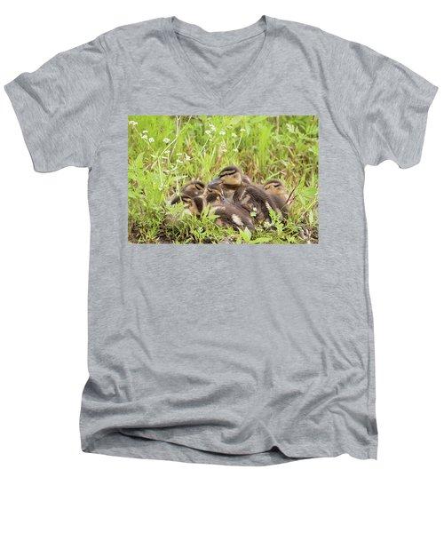 Sleepy Ducklings Men's V-Neck T-Shirt