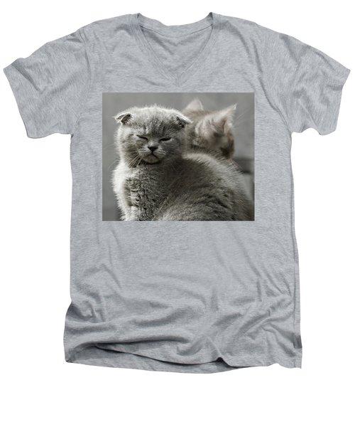 Slumbering Cat Men's V-Neck T-Shirt by Evgeniy Lankin