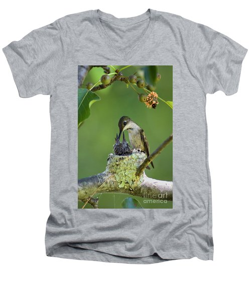 Men's V-Neck T-Shirt featuring the photograph Small Family - D009336 by Daniel Dempster