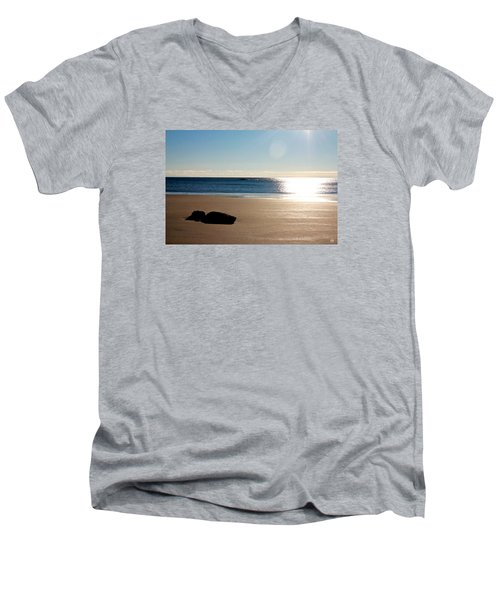 Small Point Men's V-Neck T-Shirt