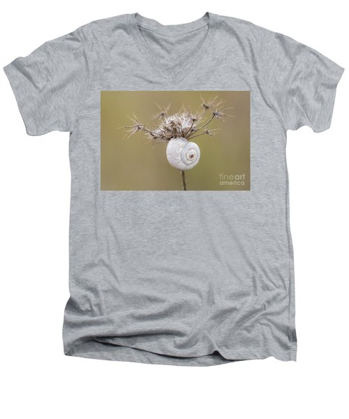 Small Snail Shell Hanging From Plant Men's V-Neck T-Shirt by Gurgen Bakhshetsyan
