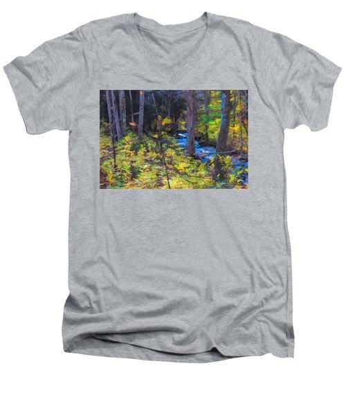 Small Stream Through Autumn Woods Men's V-Neck T-Shirt