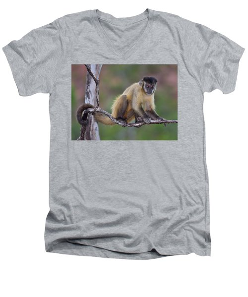 Men's V-Neck T-Shirt featuring the photograph Smarty Pants by Tony Beck