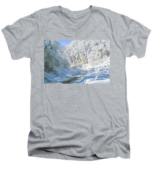 Snl-1 Men's V-Neck T-Shirt