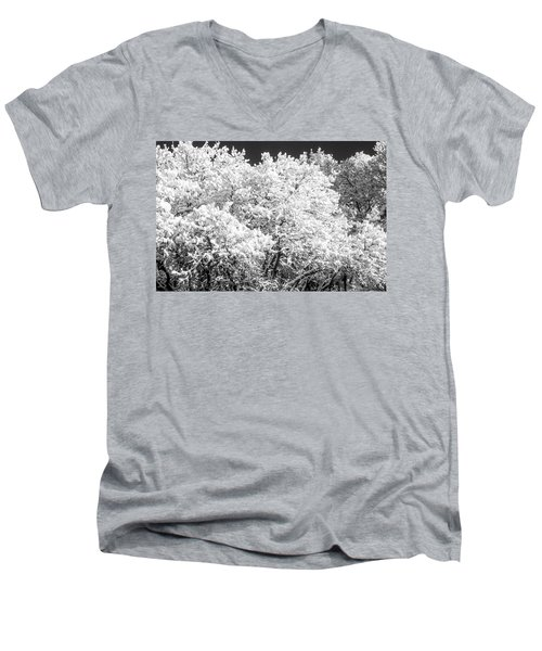 Snow And Frost On Trees In Winter Men's V-Neck T-Shirt