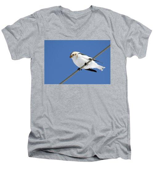 Snow Bunting Men's V-Neck T-Shirt by Brook Burling