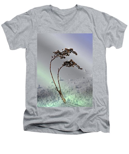 Snow Covered Weeds Men's V-Neck T-Shirt