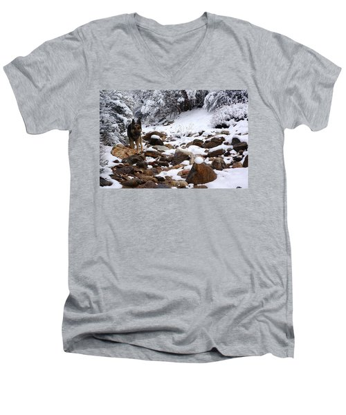 Snow Cup Men's V-Neck T-Shirt