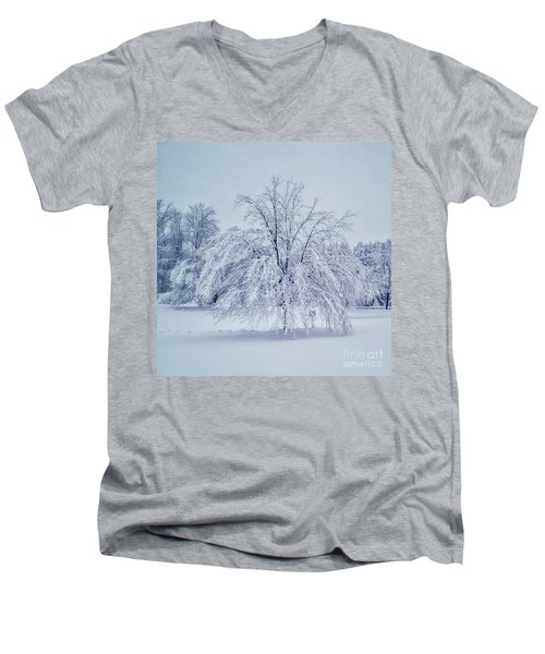 Snow Encrusted Tree Men's V-Neck T-Shirt