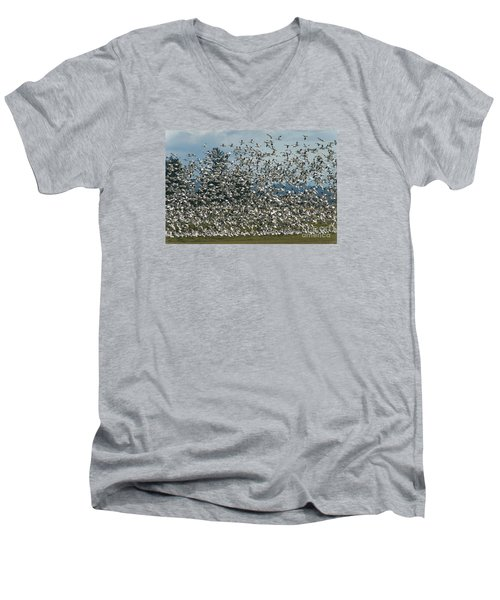 Snow Geese Convention Men's V-Neck T-Shirt