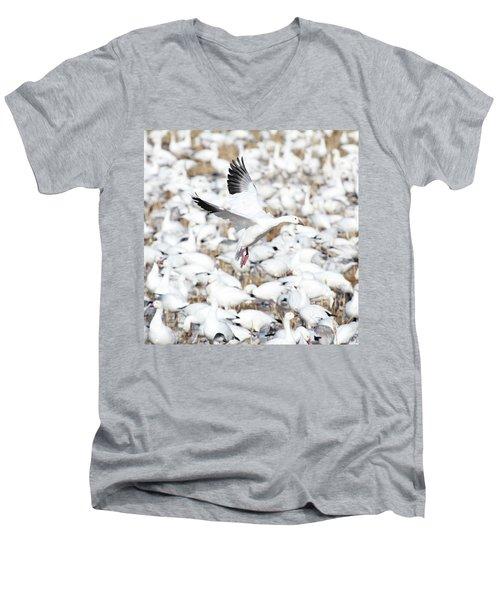 Snow Goose Lift-off Men's V-Neck T-Shirt