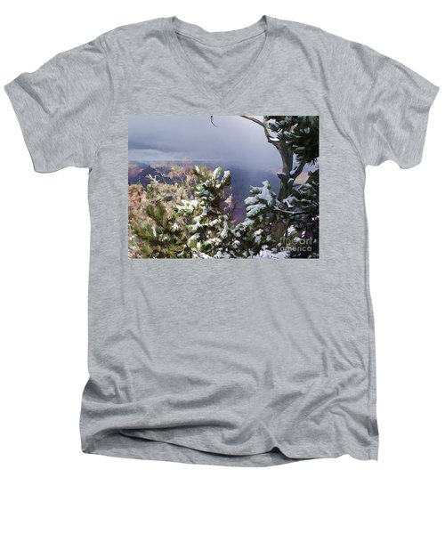 Snow In The Canyon Men's V-Neck T-Shirt