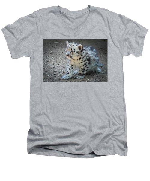 Snow Leopard Cub Men's V-Neck T-Shirt by Terry DeLuco