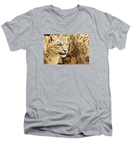 Men's V-Neck T-Shirt featuring the photograph Snow Leopard  by Gary Bridger
