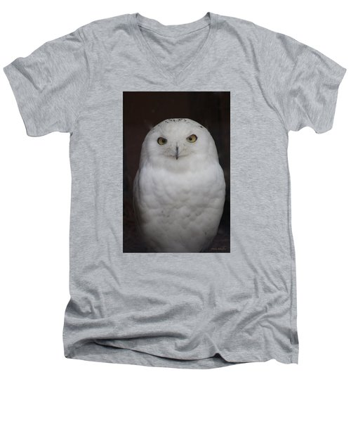 Men's V-Neck T-Shirt featuring the photograph Snow Owl by Debra     Vatalaro