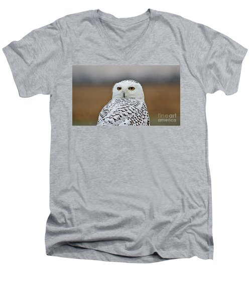 Snow Owl Strare Men's V-Neck T-Shirt